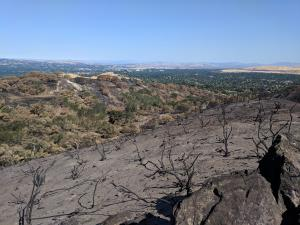 fire-on-lime-ridge-12